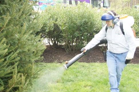 Mosquito Control In Robbinsville NJ