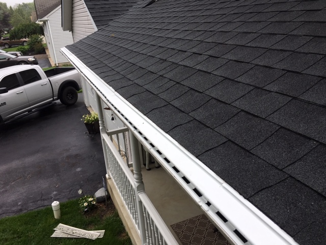 Keep Insects Away From Gutters