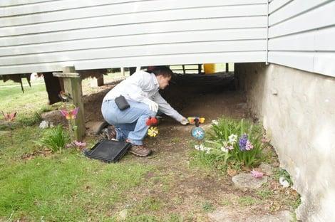 Mosquito Removal Robbinsville NJ