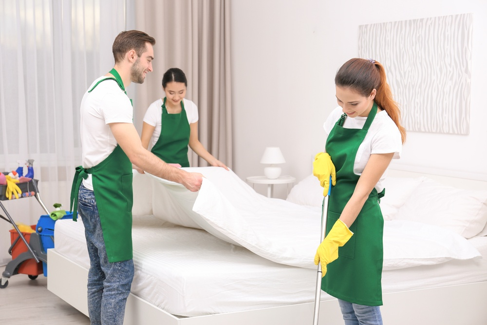 bed bug cleaning company