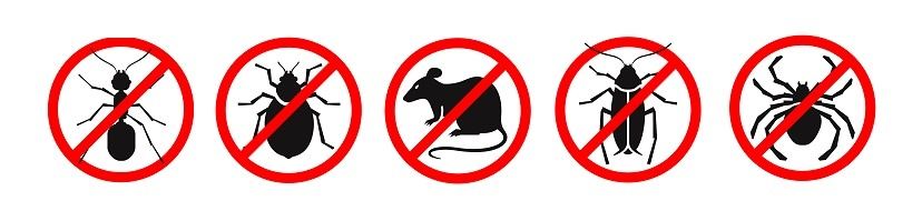 keep pests out image.jpg